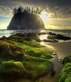 Found this gorgeous place by accident on my trip thip to the northwest----Second Beach Haystack, Olympic National Park. Free entrance to all national parks - Places To Travel, Places To See, Art Et Nature, Photos Voyages, Parcs, Adventure Is Out There, Belle Photo, Vacation Spots, Beautiful Landscapes