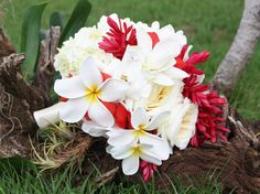 Tropical blooms bridal bouquet: Plumeria (Frangipani), gardenia, ginger, white hydrangea and roses.