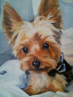 Paintings by Katy Brack Acrilic Paintings, Animal Paintings, Yorkie Dogs, Yorkies, Yorkshire Terrier Puppies, Dog Art, Pet Portraits, Photos, Artwork