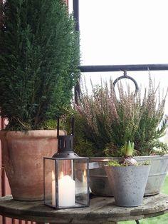 marraskuu 2014 - Page 6 of 21 - Uusi Kuu Terrace Garden, Garden Pots, Outdoor Living Patios, Autumn Interior, Vibeke Design, Minimalist Garden, Flower Pots, Flowers, Modern Farmhouse Style