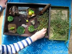 A wonderful small world idea for exploring the frog life cycle. Sensory Tubs, Baby Sensory, Sensory Play, Frog Activities, Spring Activities, Role Play Situations, Rainforest Project, Frog Habitat, Lifecycle Of A Frog