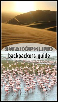 Complete guide to Swakopmund (Namibia) activities, sights, hostels