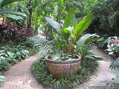 Making a garden seem larger - create focal turning points along a winding path.