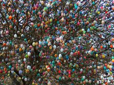 Tree in Germany covered in 10,000+ Easter eggs. Happy Easter!