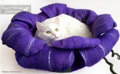 Cat bed - cat cave - cat house - eco-friendly handmade felted wool cat bed-Paradise Flower - for cats - for kittens