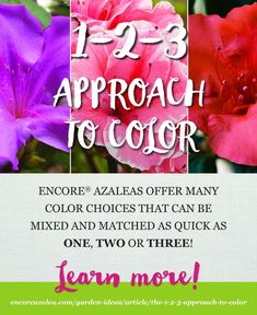 Choosing a color palette for your landscape is as easy as We'll show you how.