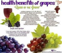 Grapes' nutritional value and health benefits are also undeniable. Learn about grapes nutrition facts including vitamins and nutrients, calories in grapes & more. Grape Nutrition, Health And Nutrition, Health And Wellness, Green Grapes Nutrition, Health Care, Nutrition Tips, Fitness Nutrition, Healthy Tips, How To Stay Healthy