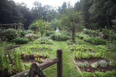 Planning A Kitchen Garden: Site and Design - Joe Cross - Garden Inspiration - Garden Site, Potager Garden, Veg Garden, Vegetable Garden Design, Garden Cottage, Edible Garden, Garden Landscaping, Fruit Garden, Bonsai Garden