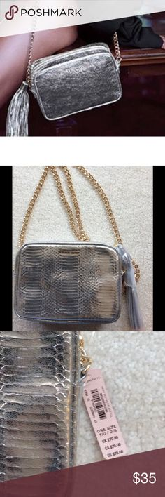 ❤VICTORIA'S SECRET BAG❤ VS Bag.  Silver with gold chain.  Zip top closure.  Long silver tassel zip pull.  Inside zip pocket.  8.5 inches wide, 6.5 inches high.  Perfect with jeans or a night out!😃. Brand new with tags. Victoria's Secret Bags