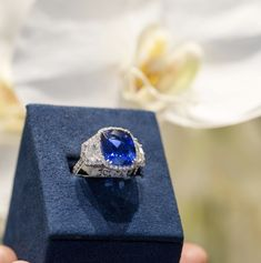 Our KirkSIGNATURE collection has some of the most stunning and unique pieces for you to add to your collection. Designer Jewelry, Jewelry Design, High Jewelry, Bridal Jewelry, Diamond Jewelry, 18k Gold, Sapphire, Fancy, Jewels