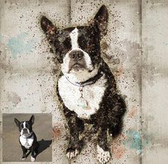 Custom dog portrait Digital art Digital painting Dog loss