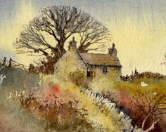 David Bellamy waterpaintings