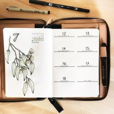 Bullet journal weekly layout, plant drawing, Gumtree and eucalyptus drawing.  | @allorasbujo