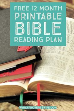 FREE 12 Month Bible Reading Plan: This is a very simple plan to follow and each reading prompt contains no more than 1-2 verses per day.
