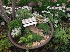 Fairy gardens planted in small containers can be placed outside or inside, depending on the season. This dish garden at the Cleveland Botanical Garden, emphasizes plants over accessories and creates a serene outdoor space in miniature. Credit: Julie E. Washington