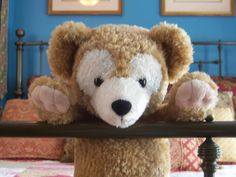 """Duffy the Disney Bear: Did you know there were """"collectible"""" Duffy """"Disney Bears""""?"""