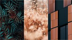 5 Wallpapers That Will Look Perfect On Your iPhone | 90