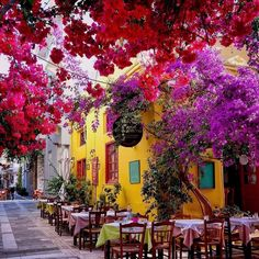 Vacation on our mind! Have you been to Greece? Any upcoming travel destinations? Beautiful Places To Travel, Wonderful Places, Places Around The World, Around The Worlds, Travel Aesthetic, Bougainvillea, Beautiful Buildings, Dream Vacations, Beautiful Gardens