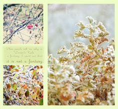 'Winter Tale'