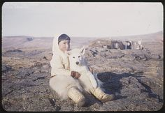 This photo is adorable. A Greenlandic Inuit boy with his dog, with a sod house in the background. Taken by Rutherford Platt, probably in 1947.  (Check out his awesome polar bear pants!)