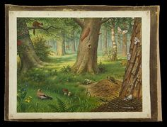 Schoolplatenschilder Koekkoek was natuurminnende illustrator Time Pictures, Nature Pictures, Vintage Cards, Vintage Postcards, School Posters, Vintage Drawing, Vintage School, Woodland Creatures, Vintage Pictures