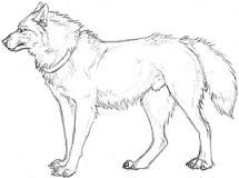 Howling Wolf Coloring Page Wolves