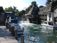 Traverse City Fishtown, Michigan this is cool to watch the Salmon run through here