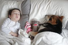 Maru in Michigan Special Friends, Animals For Kids, Animals And Pets, Best Friends Forever, Shiba Inu, Baby Dogs, Issa, Cute Kids, Little Ones
