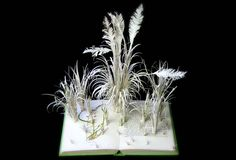 Observers book of Grasses, Sedges & Rushes. Nicola Jedrzejczak © Book Art. Altered Book. Book artist. Grass. Grasses. Pampus. Nature. Observer's book. Book Sculpture. www.nicolajedrzejczak.co.uk