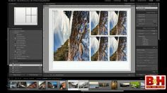 How to Print Photos with Lightroom: The Print Module