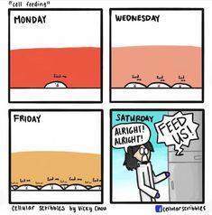 Science Memes, Funny Science, Science Fun, Nerd Jokes, Nerd Humor, Lab Humor, Phd Student, Ap Biology, Microbiology
