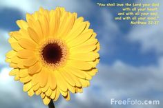 love of god | Picture of You shall love the Lord your God - Free Pictures - FreeFoto ...