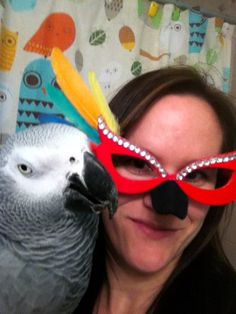 Parrot Costume Glasses (with Parrot!)