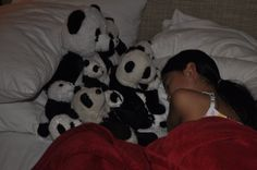 Pandas watching over a sleeping Allison