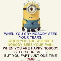 Super Ideas For Funny Pictures Memes Humor Minions Quotes Funny Minion Pictures, Funny Minion Memes, Minions Quotes, Memes Humor, Funny Humor, Humor Quotes, Funny Photos, Funny Images, Minion Sayings