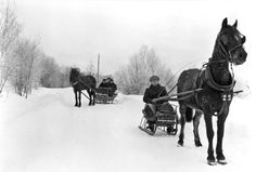 On sleigh rides in winter wonderland, ca. 1910