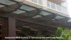 Bird Netting installation services in Bangalore and Mumbai. Hicare specializes in anti-bird netting services by Trained Experts. We offer Special HDPE net quality. Get high-quality anti-bird netting for your residential building. Call us now at 39889988 Bird Netting, Pigeon, Conservation, Mumbai, Stairs, Industrial, Building, Places, Birds