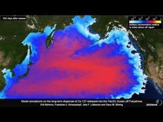 Fukushima: Your Days of Eating Pacific Ocean Fish Are Over | World Truth.TV  http://worldtruth.tv/fukushima-your-days-of-eating-pacific-ocean-fish-are-over/