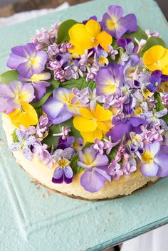 Creamy Lemon Cheesecake with Vanilla Wafer Crust- Creamy Lemon Cheesecake with Vanilla Wafer Crust Creamy Lemon Cheesecake with Vanilla Wafer Crust and Edible Flowers - Lemon Cheesecake, Cheesecake Recipes, Dessert Recipes, Cupcakes, Cupcake Cakes, Vanilla Wafer Crust, Edible Flowers Cake, Flower Food, Brunch