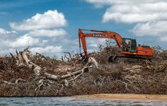 A devastação do Xingu, em imagens | Brasil | EL PAÍS Brasil