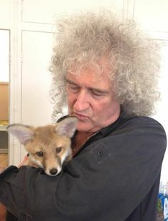Read Roger from the story Imágenes Queen by Valseph (Kenway) with reads. John Deacon, Brian May Red Special, Princes Of The Universe, Queen Brian May, Los Rolling Stones, Roger Taylor, Queen News, Ben Hardy, Queen Pictures