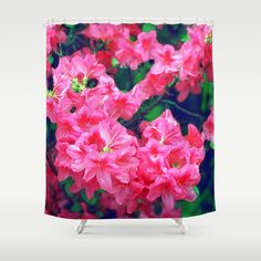 Pink azalea blooms. Shower Curtain