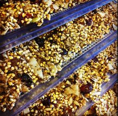 Raw sprouted buckwheat granola dehydrating