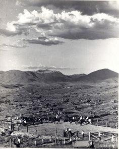 Triangle-V Ranch, Winslow, Arizona