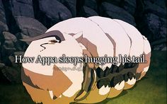Appa sleeping :) I would totally snuggle with him, who's with me?