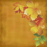 Autumn Paper 3 by anitess
