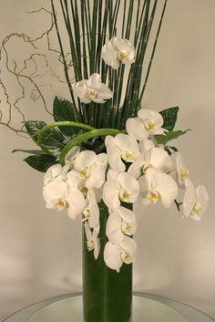 Elegant and modern phalaenopsis orchid arrangement Tropical Flower Arrangements, Orchid Arrangements, Outdoor Garden Decor, Garden Decor Items, Flower Vases, Flower Pots, Ikebana, Luxury Garden Furniture, Magic Garden