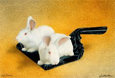 """""""Dust bunnies..."""" by Will Bullas. Art prints in paper, canvas and metal at fineartamerica.com."""
