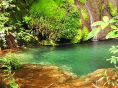 Piscinas naturais são frequentes nos rios ao redor de Bonito, estado de Mato Grosso do Sul, Brasil.
