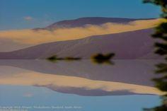 landscapereflection